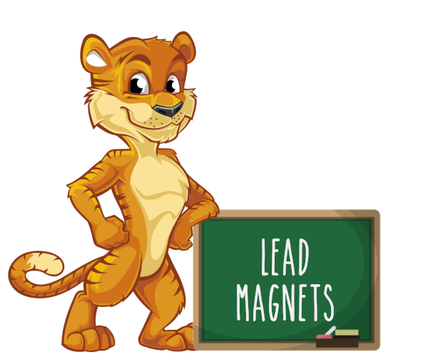 marketing content lead magnets